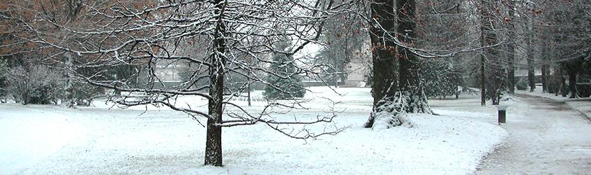 Le parc de Voiron sous la neige